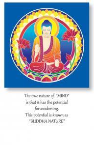 AWAKENING_Buddha_Nature_Mandala