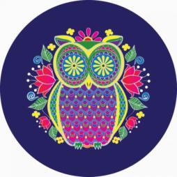 Midnight-Owl